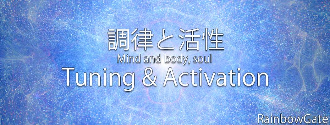 Tuning&ActivationWS