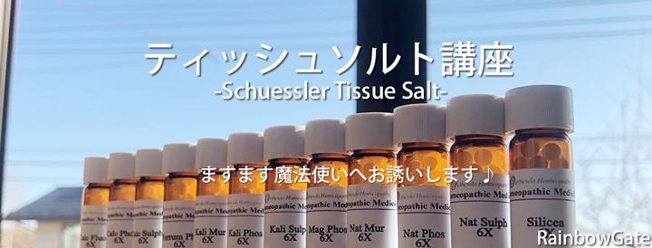 TissueSaltCourse